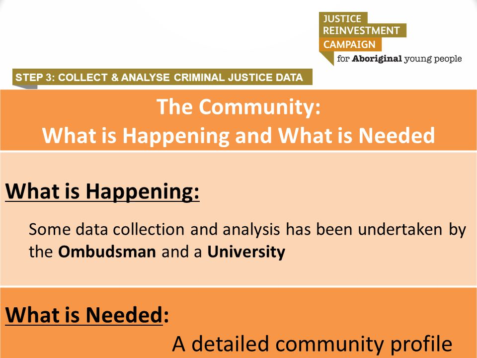 STEP 3: COLLECT & ANALYSE CRIMINAL JUSTICE DATA The Community: What is Happening and What is Needed What is Happening: Some data collection and analys