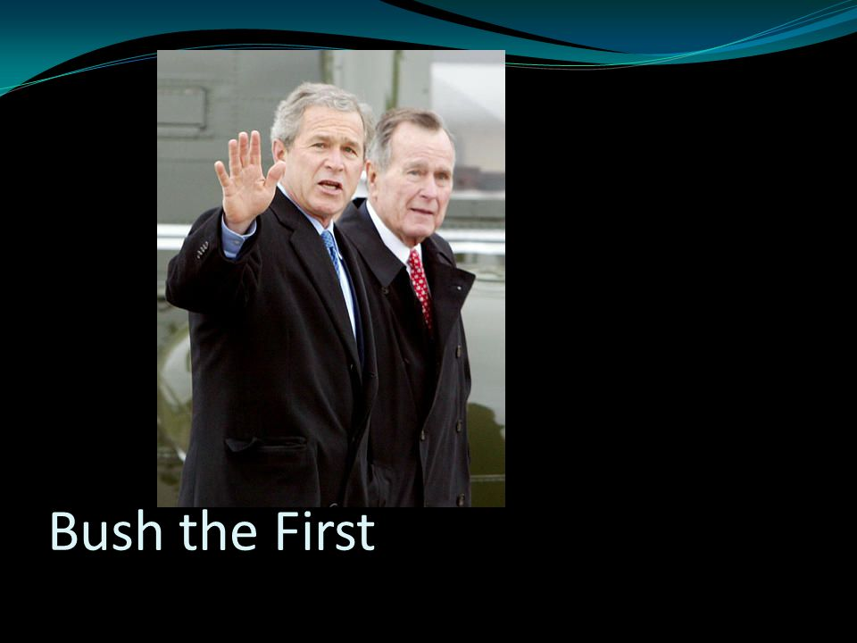 Bush the First