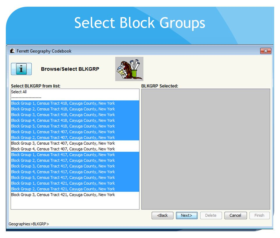 Select Block Groups