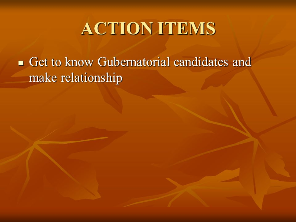ACTION ITEMS Get to know Gubernatorial candidates and make relationship Get to know Gubernatorial candidates and make relationship