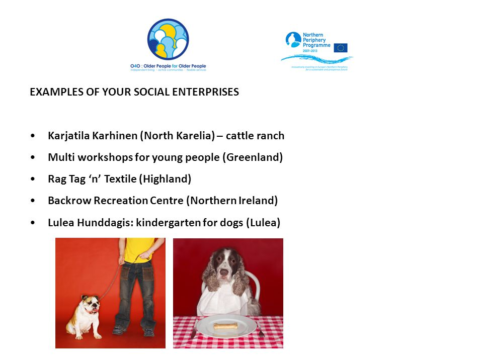 EXAMPLES OF YOUR SOCIAL ENTERPRISES Karjatila Karhinen (North Karelia) – cattle ranch Multi workshops for young people (Greenland) Rag Tag 'n' Textile (Highland) Backrow Recreation Centre (Northern Ireland) Lulea Hunddagis: kindergarten for dogs (Lulea)
