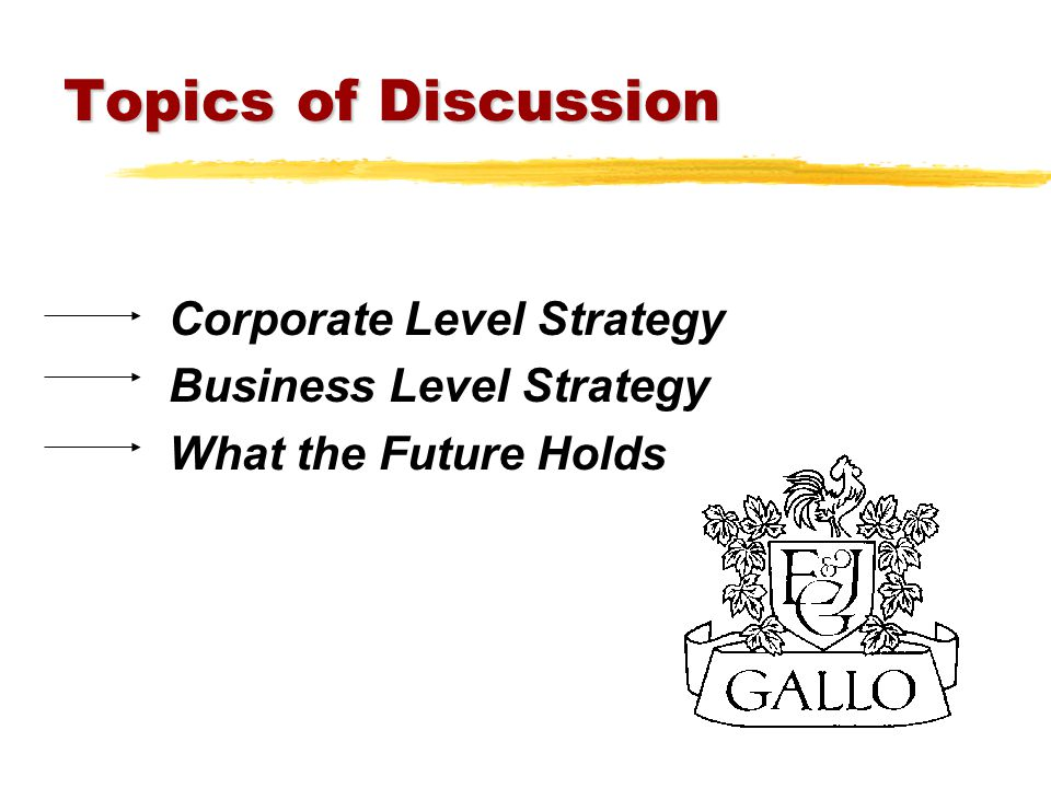 Topics of Discussion Corporate Level Strategy Business Level Strategy What the Future Holds