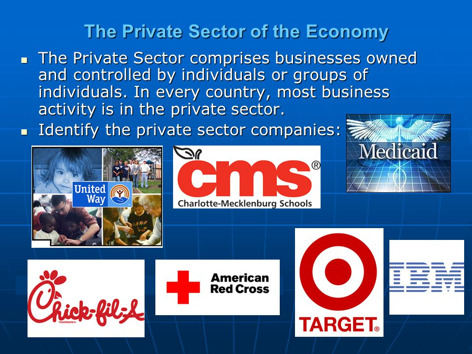 The Private Sector of the Economy The Private Sector comprises businesses owned and controlled by individuals or groups of individuals.