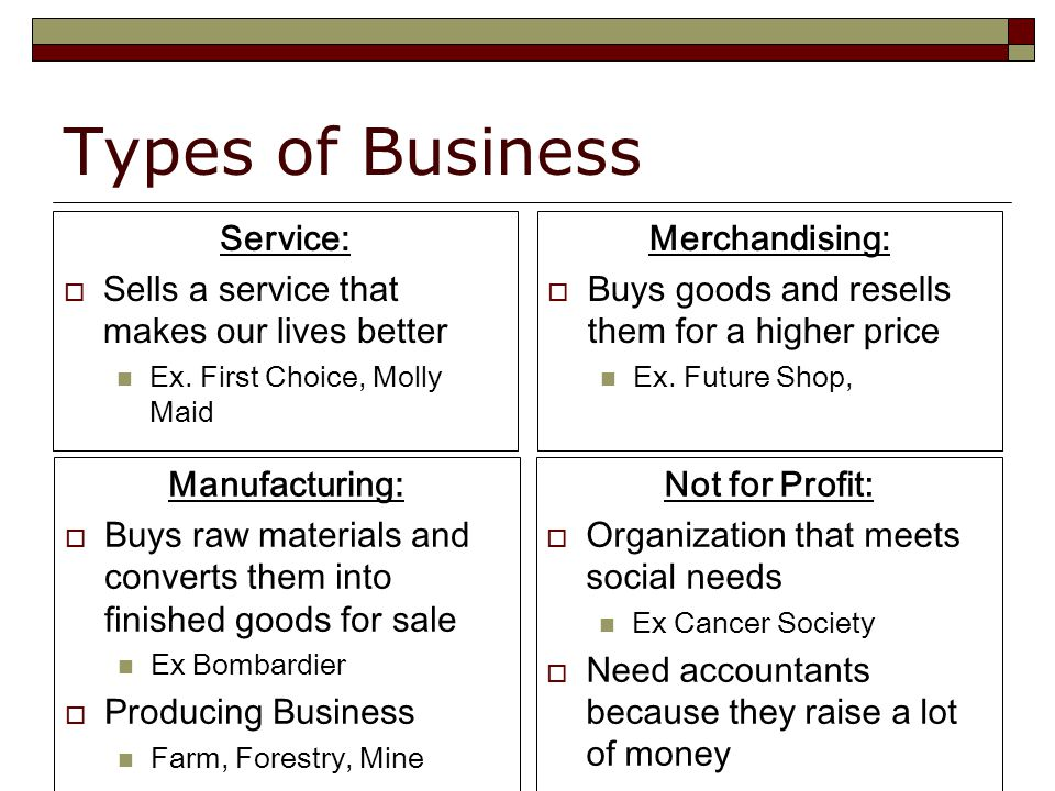 Types of Business Service:  Sells a service that makes our lives better Ex.