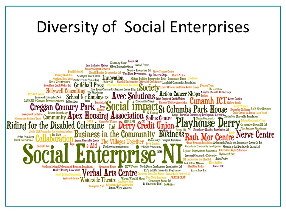 Diversity of Social Enterprises