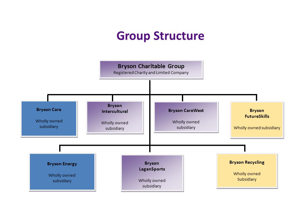 Group Structure Bryson Intercultural Wholly owned subsidiary Bryson Intercultural Wholly owned subsidiary Bryson Recycling Wholly owned Subsidiary Bryson Recycling Wholly owned Subsidiary Bryson Energy Wholly owned subsidiary Bryson Energy Wholly owned subsidiary Bryson LaganSports Wholly owned subsidiary Bryson LaganSports Wholly owned subsidiary Bryson Charitable Group Registered Charity and Limited Company Bryson Charitable Group Registered Charity and Limited Company Bryson CareWest Wholly owned subsidiary Bryson CareWest Wholly owned subsidiary Bryson FutureSkills Wholly owned subsidiary Bryson FutureSkills Wholly owned subsidiary Bryson Care Wholly owned subsidiary Bryson Care Wholly owned subsidiary