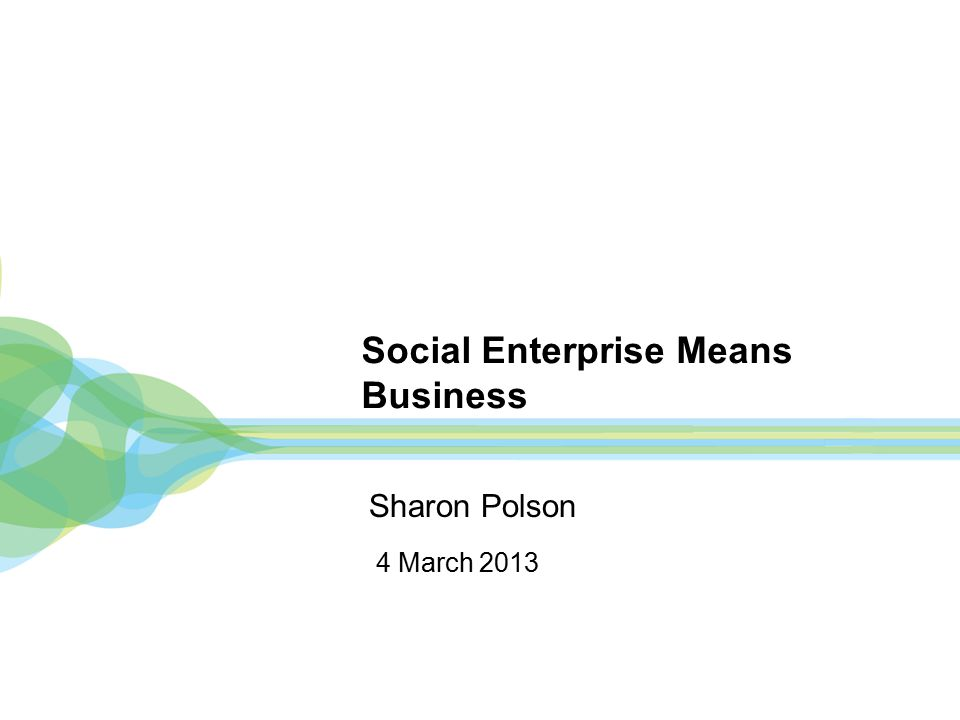 Social Enterprise Means Business 4 March 2013 Sharon Polson