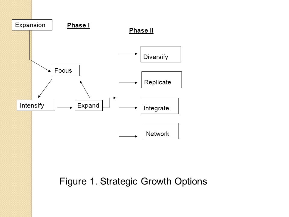 Expansion Focus Intensify Expand Diversify Replicate Integrate Network Phase I Phase II Figure 1.