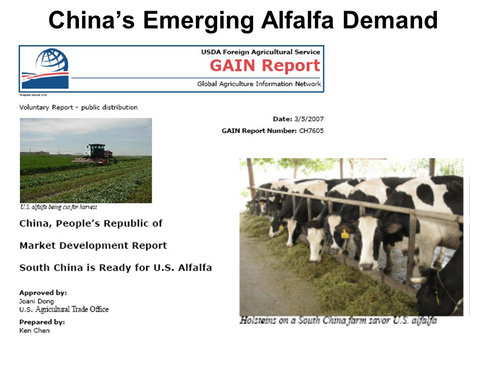 China's Emerging Alfalfa Demand