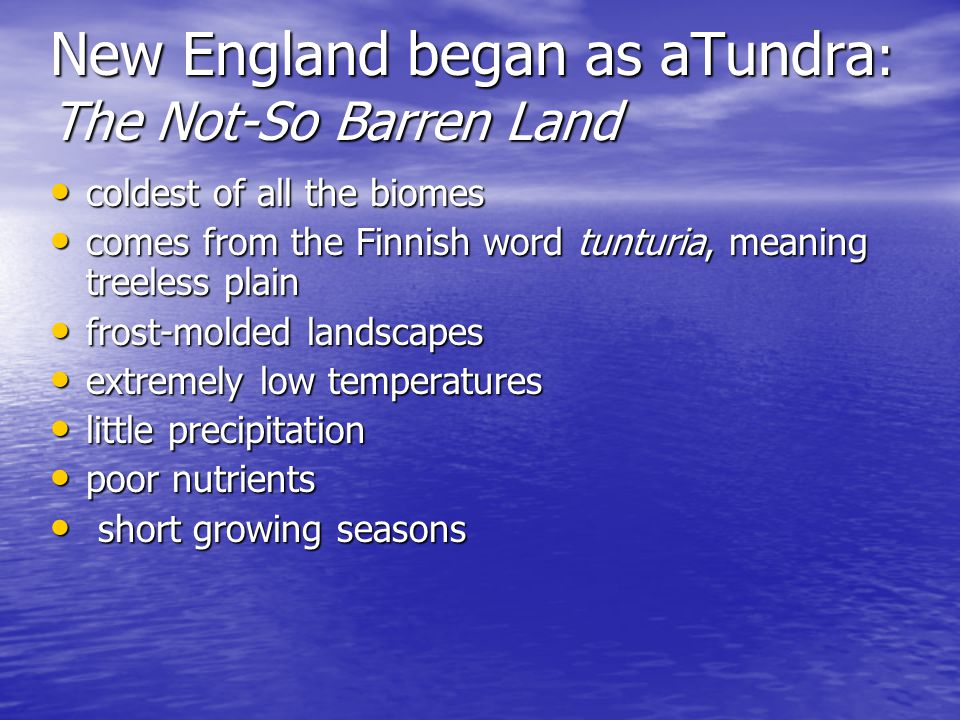 New England began as aTundra : The Not-So Barren Land coldest of all the biomes coldest of all the biomes comes from the Finnish word tunturia, meaning treeless plain comes from the Finnish word tunturia, meaning treeless plain frost-molded landscapes frost-molded landscapes extremely low temperatures extremely low temperatures little precipitation little precipitation poor nutrients poor nutrients short growing seasons short growing seasons