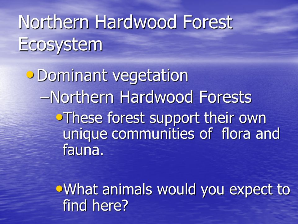 Northern Hardwood Forest Ecosystem Dominant Dominant vegetation –Northern –Northern Hardwood Forests These These forest support their own unique communities of flora and fauna.