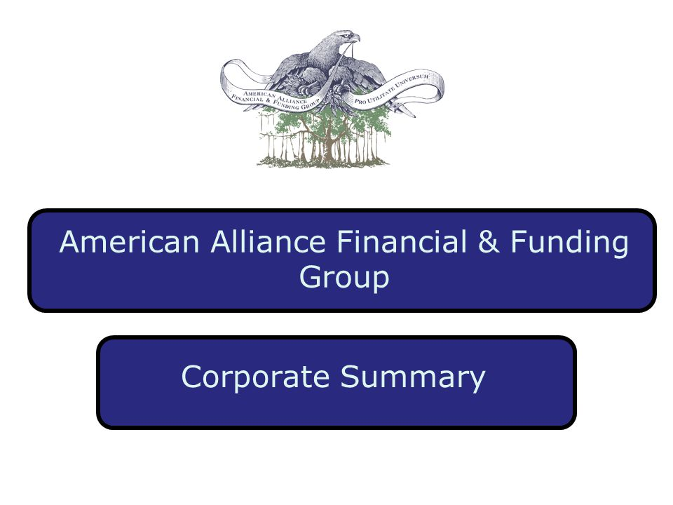 American Alliance Financial & Funding Group Corporate Summary