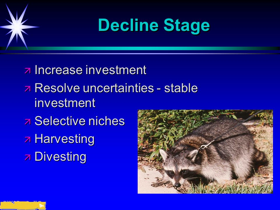 ©2000 Prentice Hall Decline Stage ä Increase investment ä Resolve uncertainties - stable investment ä Selective niches ä Harvesting ä Divesting