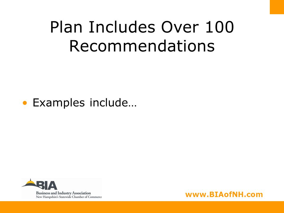 www.nhbia.org www.BIAofNH.com Plan Includes Over 100 Recommendations Examples include…