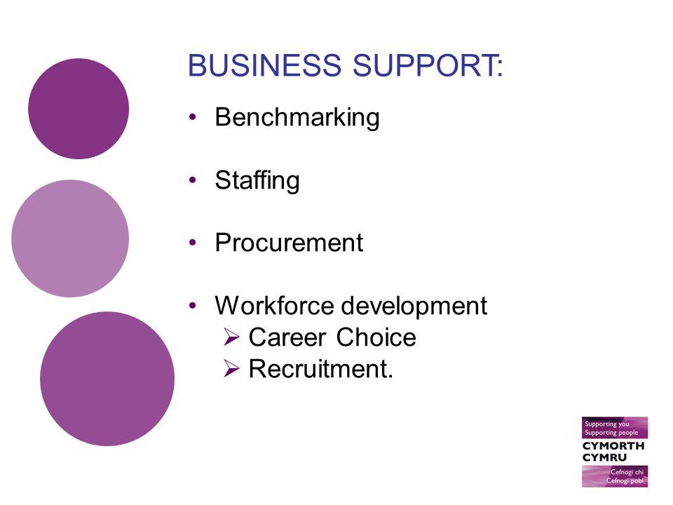 Benchmarking Staffing Procurement Workforce development  Career Choice  Recruitment.