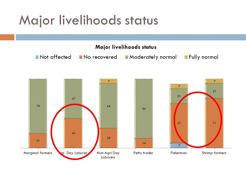 Major livelihoods status