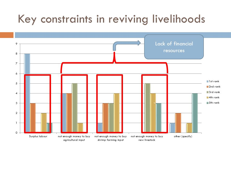 Key constraints in reviving livelihoods `` Lack of financial resources