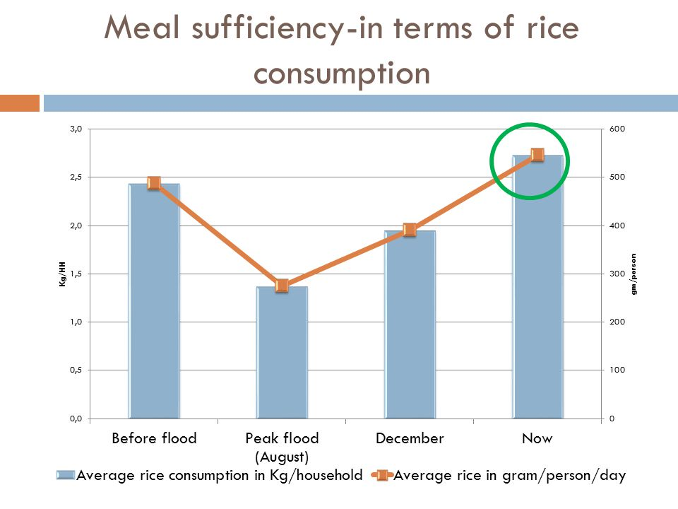 Meal sufficiency-in terms of rice consumption