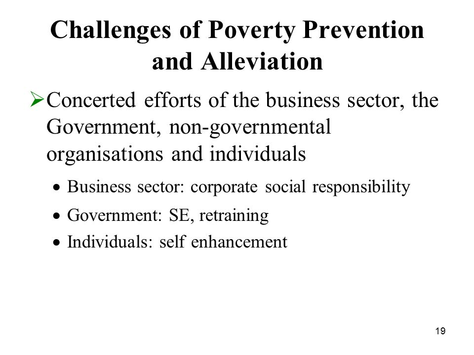 19 Challenges of Poverty Prevention and Alleviation  Concerted efforts of the business sector, the Government, non-governmental organisations and individuals  Business sector: corporate social responsibility  Government: SE, retraining  Individuals: self enhancement