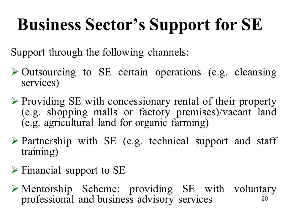 20 Business Sector's Support for SE Support through the following channels:  Outsourcing to SE certain operations (e.g.