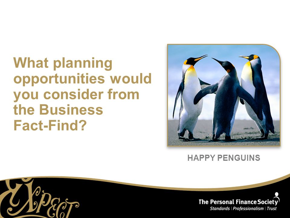 HAPPY PENGUINS What planning opportunities would you consider from the Business Fact-Find
