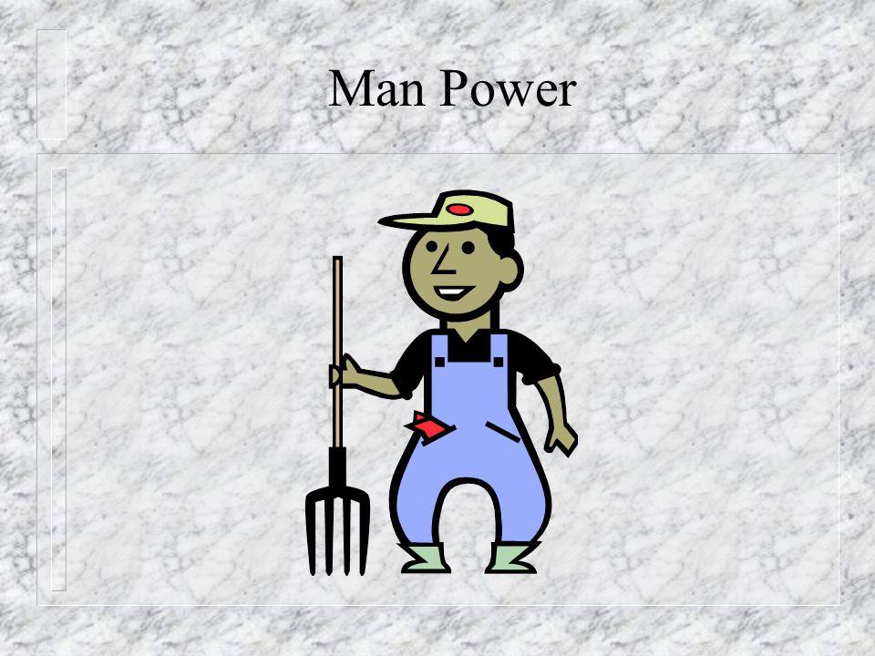 Animal Power