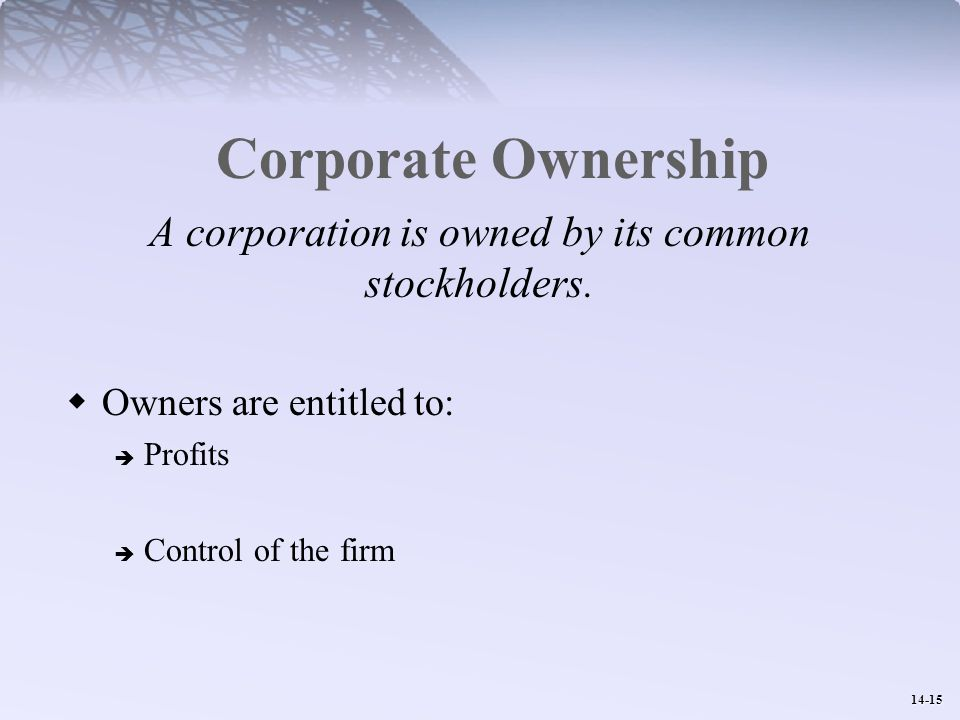 14-15 Corporate Ownership A corporation is owned by its common stockholders.
