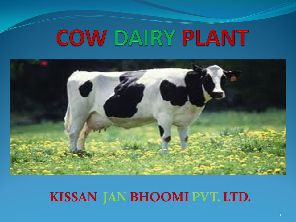 KISSAN JAN BHOOMI PVT. LTD. 1