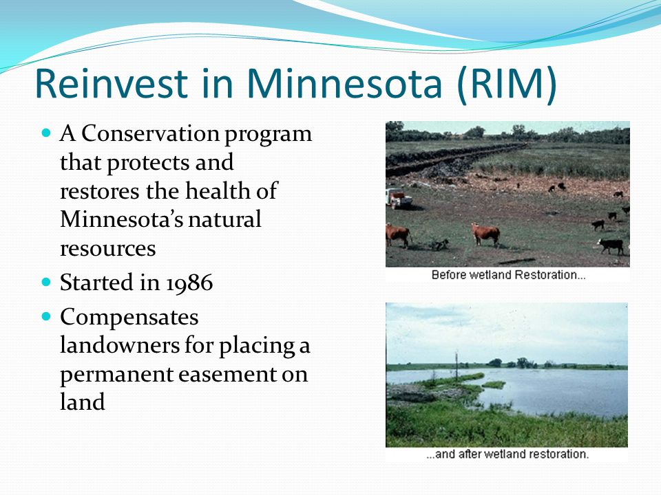 Reinvest in Minnesota (RIM) A Conservation program that protects and restores the health of Minnesota's natural resources Started in 1986 Compensates landowners for placing a permanent easement on land