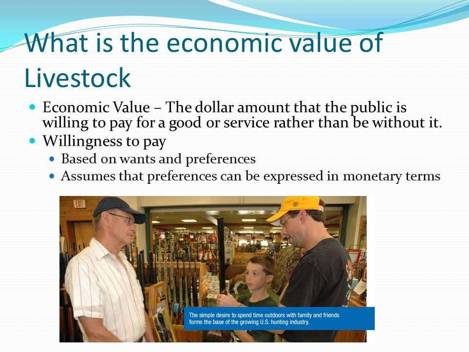 What is the economic value of Livestock Economic Value – The dollar amount that the public is willing to pay for a good or service rather than be without it.