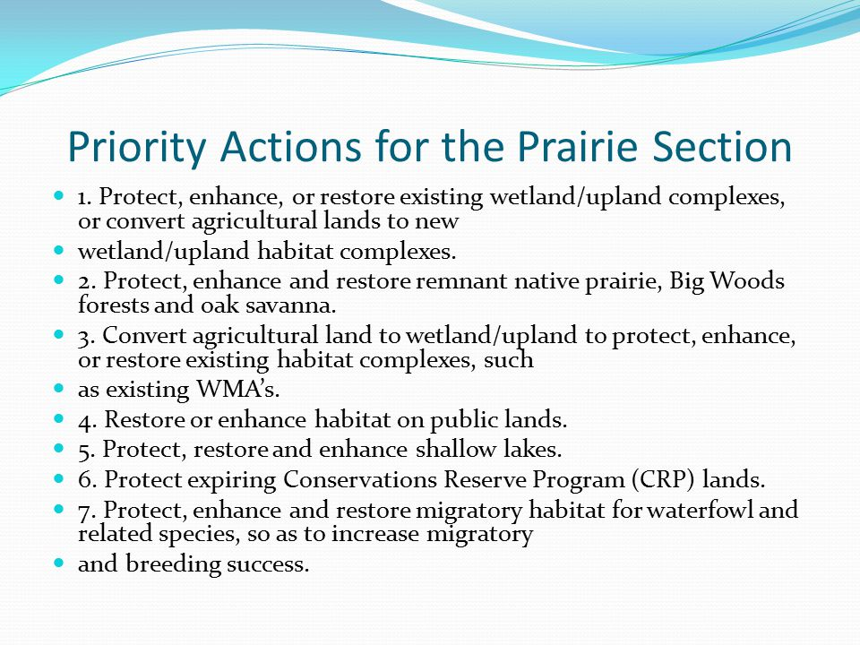 Priority Actions for the Prairie Section 1.