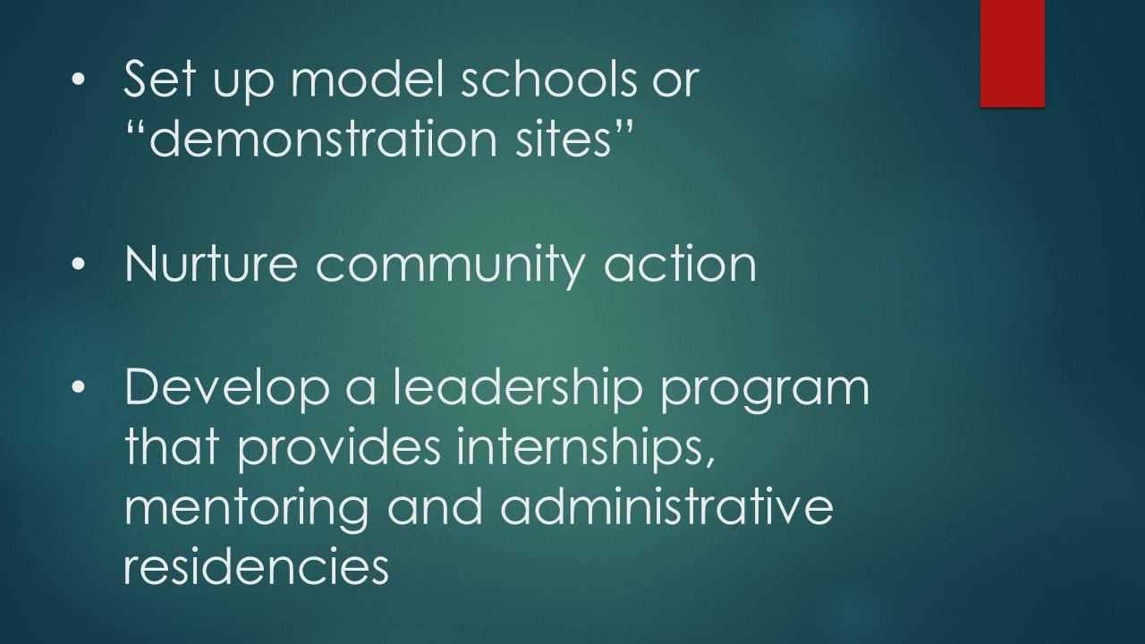"""Set up model schools or """"demonstration sites"""" Nurture community action Develop a leadership program that provides internships, mentoring and administr"""