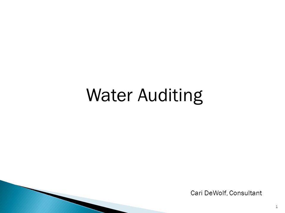 Water Auditing 1 Cari DeWolf, Consultant