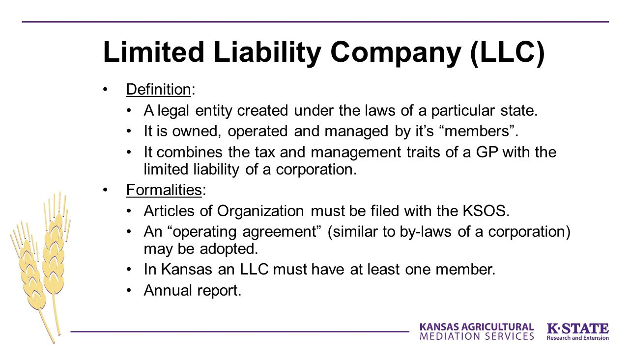 Definition: A legal entity created under the laws of a particular state.