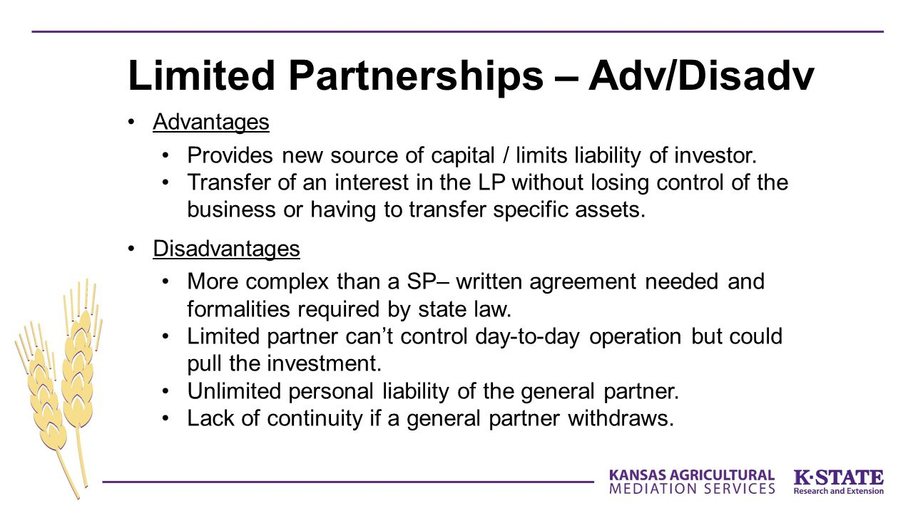 Advantages Provides new source of capital / limits liability of investor.