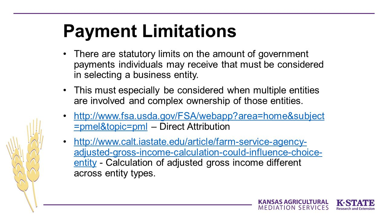 There are statutory limits on the amount of government payments individuals may receive that must be considered in selecting a business entity.