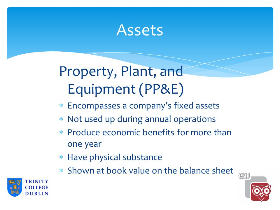 Assets Property, Plant, and Equipment (PP&E)  Encompasses a company's fixed assets  Not used up during annual operations  Produce economic benefits for more than one year  Have physical substance  Shown at book value on the balance sheet 2-18