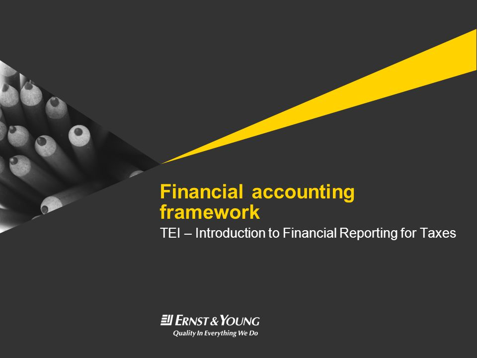 Financial accounting framework TEI – Introduction to Financial Reporting for Taxes