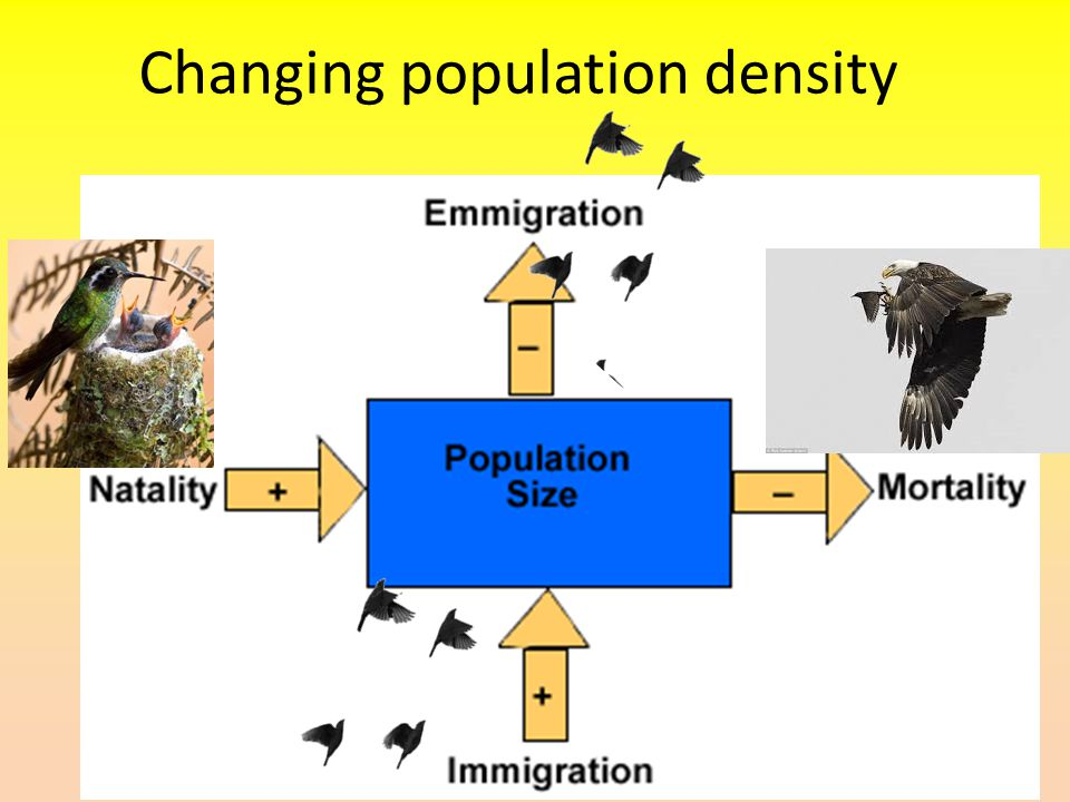 Changing population density