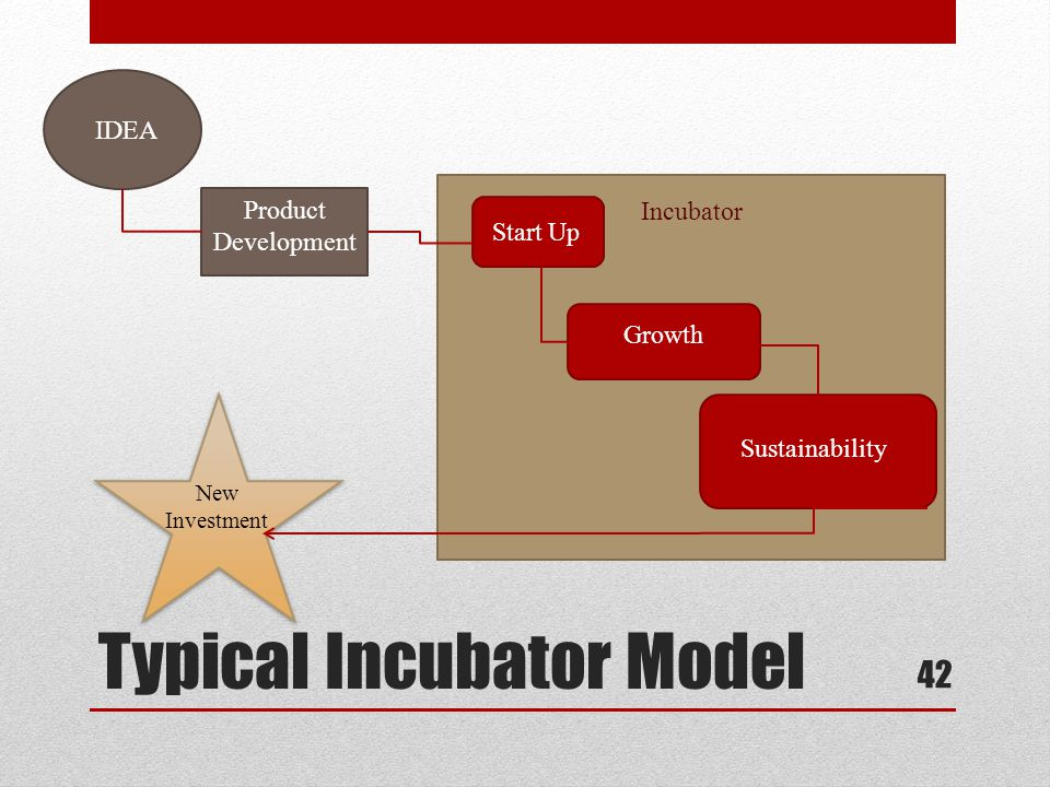 Typical Incubator Model 42 IDEA Product Development Incubator Start Up Growth Sustainability New Investment