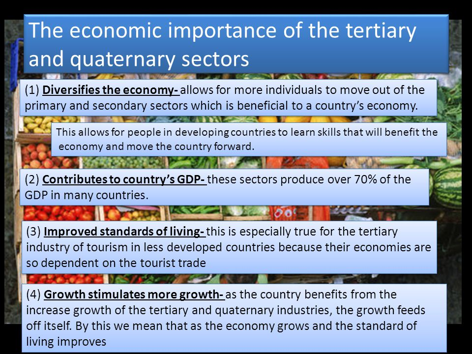 The economic importance of the tertiary and quaternary sectors (1) Diversifies the economy- allows for more individuals to move out of the primary and