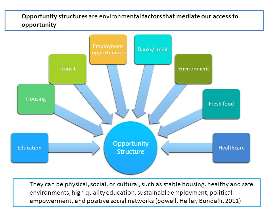 Opportunity Structure EducationHousingTransit Employment opportunities Banks/creditEnvironmentFresh foodHealthcare Opportunity structures are environmental factors that mediate our access to opportunity They can be physical, social, or cultural, such as stable housing, healthy and safe environments, high quality education, sustainable employment, political empowerment, and positive social networks (powell, Heller, Bundalli, 2011)