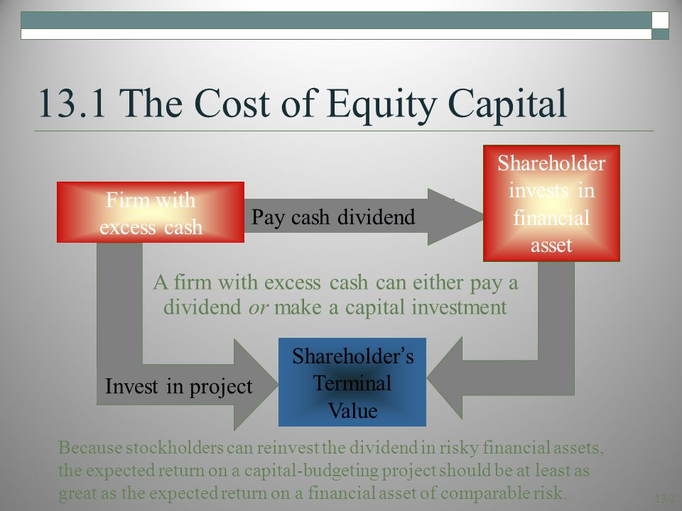 13-2 Invest in project 13.1 The Cost of Equity Capital Firm with excess cash Shareholder's Terminal Value Pay cash dividend Shareholder invests in fin