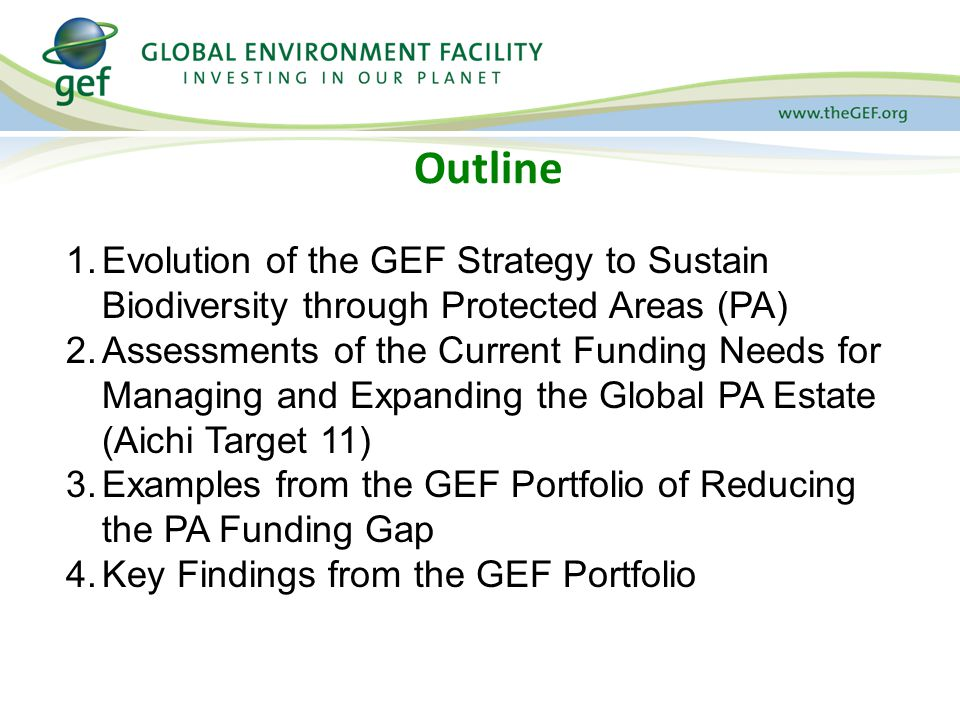Outline 1.Evolution of the GEF Strategy to Sustain Biodiversity through Protected Areas (PA) 2.Assessments of the Current Funding Needs for Managing and Expanding the Global PA Estate (Aichi Target 11) 3.Examples from the GEF Portfolio of Reducing the PA Funding Gap 4.Key Findings from the GEF Portfolio