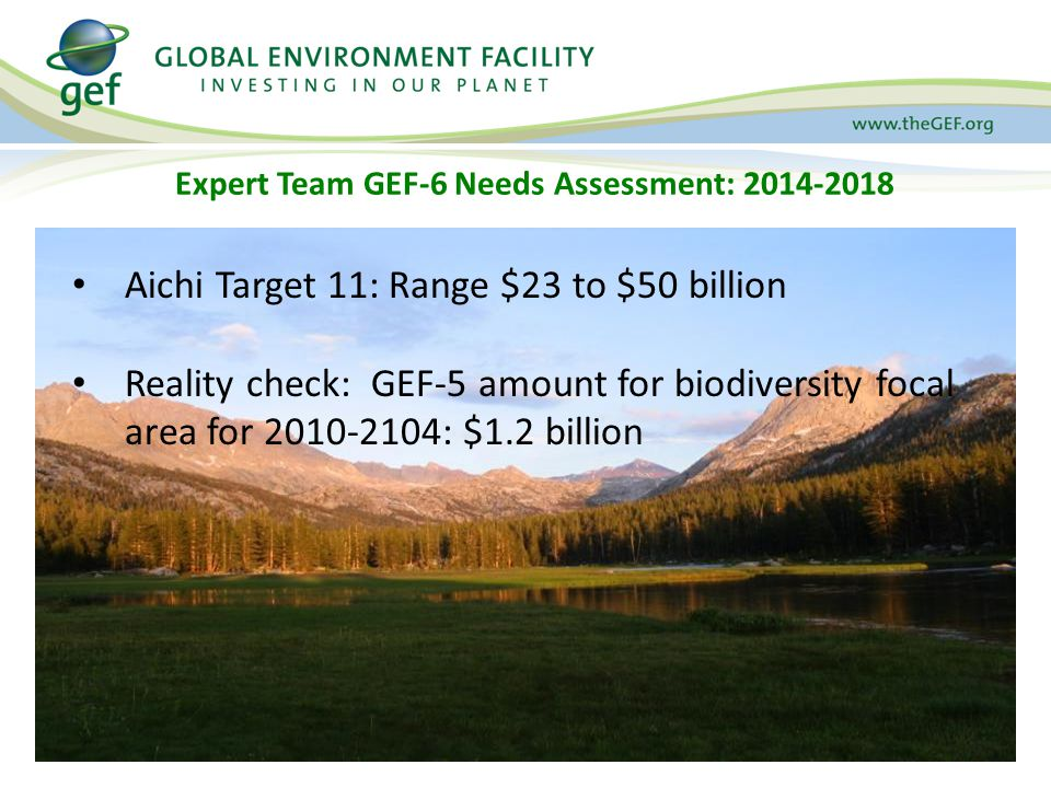 Expert Team GEF-6 Needs Assessment: 2014-2018 Aichi Target 11: Range $23 to $50 billion Reality check: GEF-5 amount for biodiversity focal area for 2010-2104: $1.2 billion