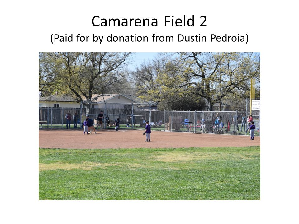 Camarena Field 2 (Paid for by donation from Dustin Pedroia)