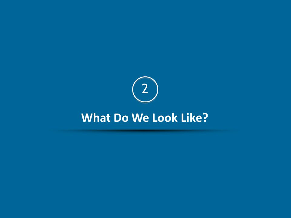What Do We Look Like? 2