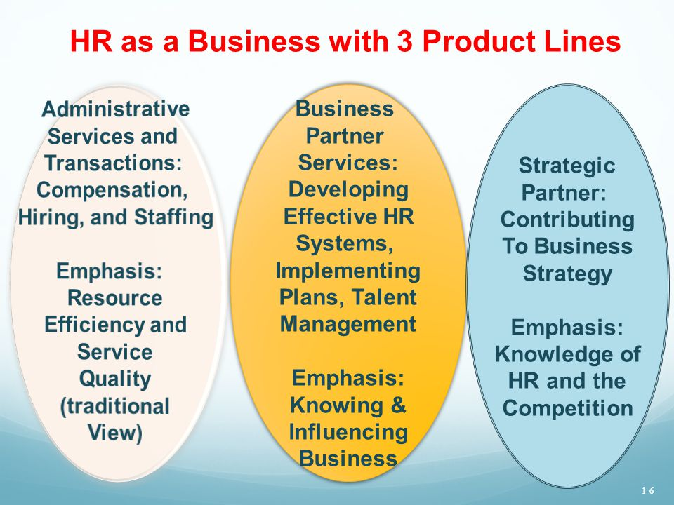 HR as a Business with 3 Product Lines Business Partner Services: Developing Effective HR Systems, Implementing Plans, Talent Management Emphasis: Know