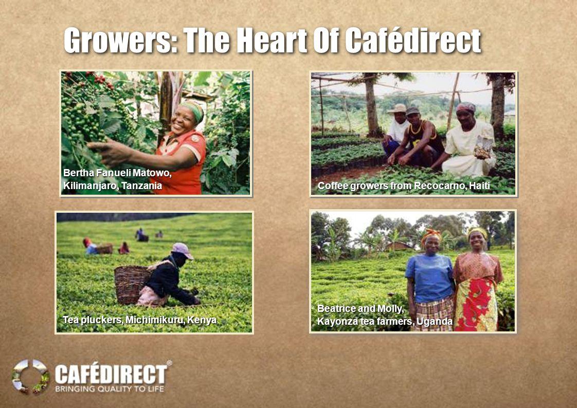 Bertha Fanueli Matowo, Kilimanjaro, Tanzania Bertha Fanueli Matowo, Kilimanjaro, Tanzania Coffee growers from Recocarno, Haiti Tea pluckers, Michimikuru, Kenya Beatrice and Molly, Kayonza tea farmers, Uganda Beatrice and Molly, Kayonza tea farmers, Uganda Growers: The Heart Of Cafédirect