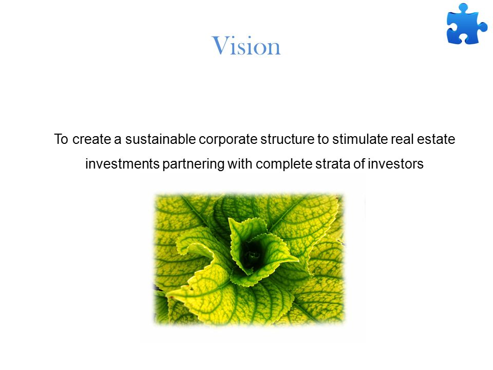 Vision To create a sustainable corporate structure to stimulate real estate investments partnering with complete strata of investors